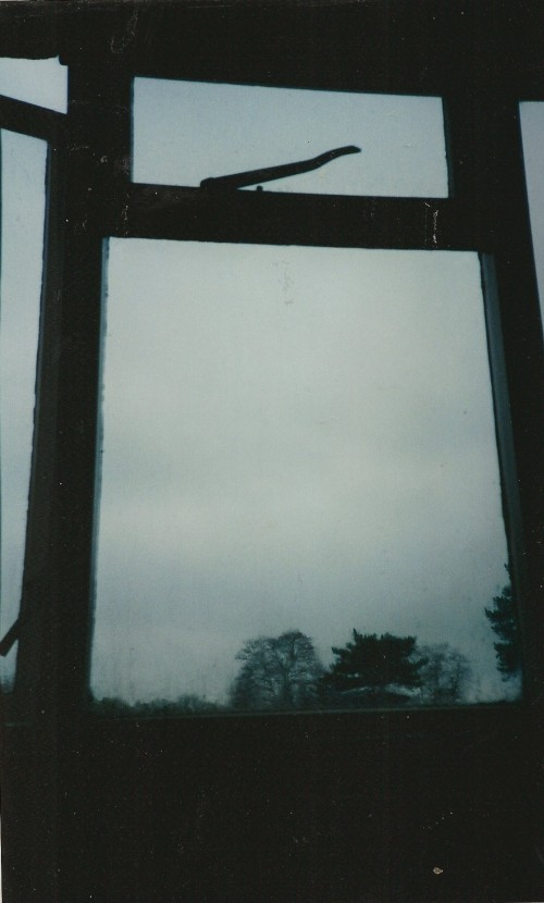 view from my window, Farnham Royal 1996