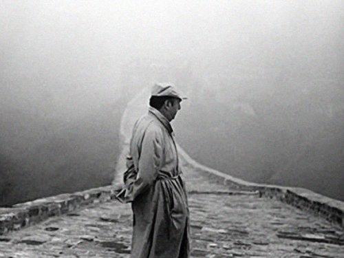 Pablo, in mist