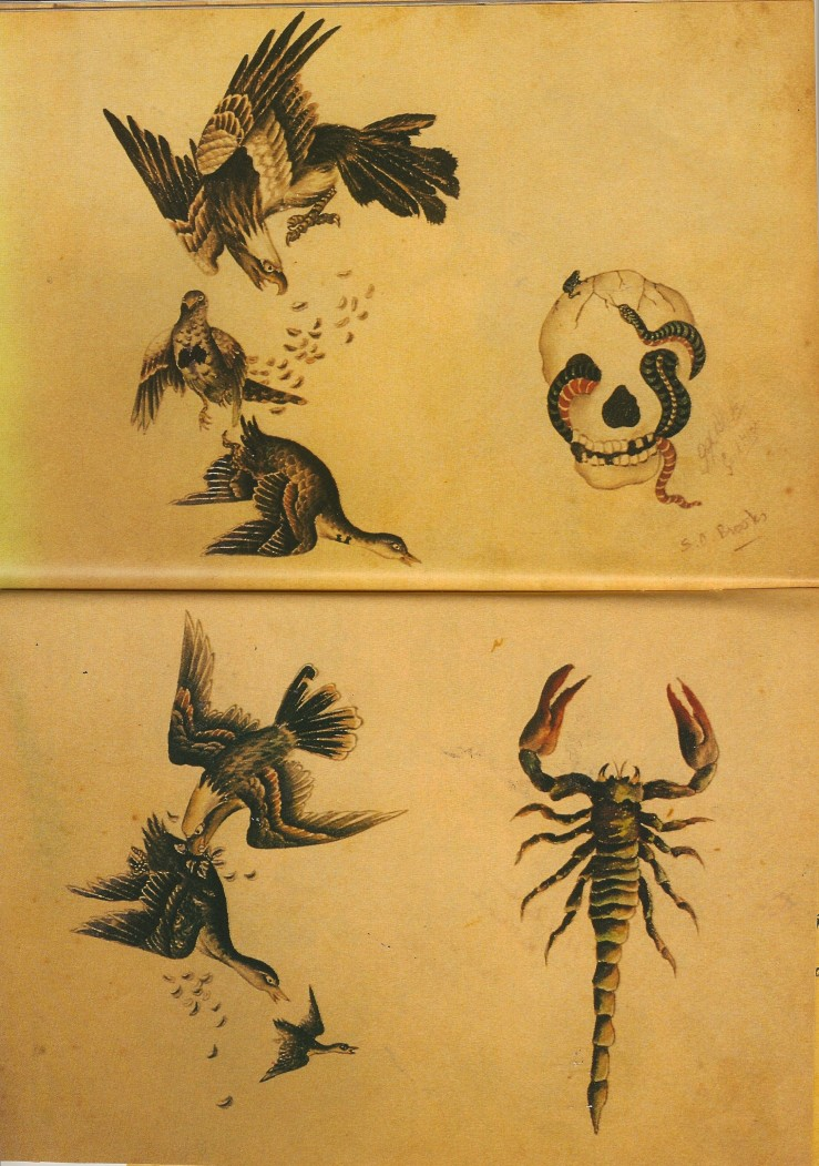 scorpions and worm-infested eye sockets, etc